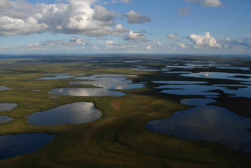 Канадские равнины