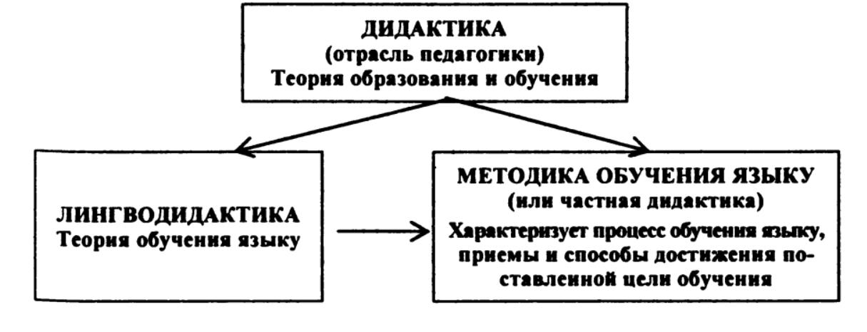 дидактика, лингводидактика, методика